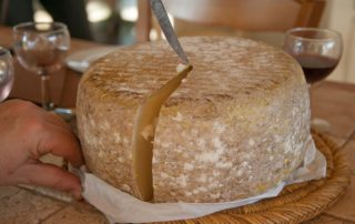 caracteristicas queso ovej zactenaa