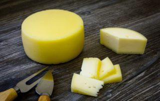 elaboracion queso artesanal